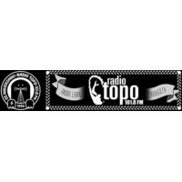 Logo of radio station Radio Topo