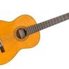 Logo of show La guitarra