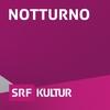 Logo of show Notturno