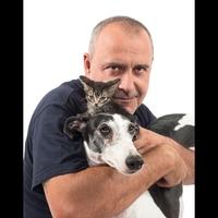 Logo de l'émission Como el perro y el gato