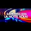 Logo of show La Notte Volta