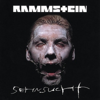 Cover of the track Sehnsucht