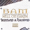 Couverture de l'album Hell On Earth (Screwed & Chopped)