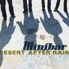 Couverture de l'album Desert After Rain