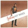 Couverture de l'album The Hit Mixes