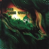 Couverture de l'album Green World