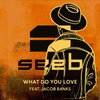 Couverture de l'album What Do You Love (feat. Jacob Banks) - Single