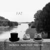 Couverture de l'album FAT
