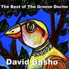 Couverture de l'album The Best of the Groove Doctor