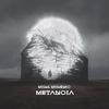 Cover of the album Metanoia