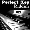 Couverture de l'album Perfect Key Riddim
