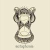 Cover of the album Metaphonia