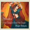 Couverture de l'album Mahadeva - Single