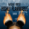 Cover of the album Highly Flammable
