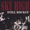 Couverture de l'album ... Still Rockin'...