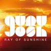 Cover of the album Ray of Sunshine - Single