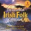 Couverture de l'album The Essential Irish Folk Collection