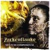 Couverture de l'album Mixtum Compositum