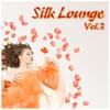 Couverture de l'album Silk Lounge, Vol. 3 (A Journey Through Silky Clouds)