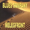 Cover of the album Melegfront