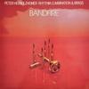 Couverture de l'album Bandfire