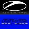Couverture de l'album Kinetic / Blossom - EP
