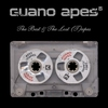 Couverture de l'album The Best and the Lost (T)apes