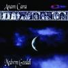Couverture de l'album Anam Cara