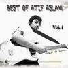 Couverture de l'album Best of Atif Aslam