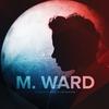 Couverture de l'album A Wasteland Companion