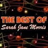 Couverture de l'album The Best of Sarah Jane Morris (Live)