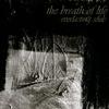 Cover of the album Everlasting Souls