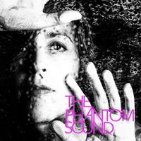 Cover of the track The Phantom Sound