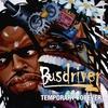 Couverture de l'album Temporary Forever