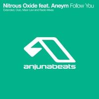 Couverture du titre Follow You - EP (iTunes)