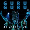 Cover of the album 45 Years Live