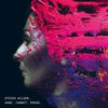 Cover of the album Hand Cannot Erase (Deluxe Edition)