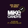 Couverture de l'album One Night In Ibiza (Feat. Patrick Miller)