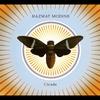 Couverture de l'album Cicada