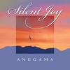 Couverture de l'album Silent Joy