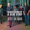 Couverture de l'album After the Flood