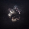 Cover of the album Augur Nox
