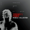 Cover of the album Muscle Collection