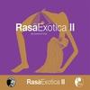 Couverture de l'album Rasa Exotica II