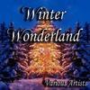 Couverture de l'album Winter Wonderland
