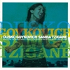 Couverture de l'album Goykovich, Dusko: Samba Tzigane