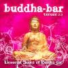 Couverture de l'album Universal Sound of Buddha Bar, Vol. 2