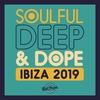 Couverture de l'album Soulful Deep & Dope Ibiza 2019
