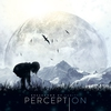 Cover of the album Perception