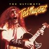 Couverture de l'album The Ultimate Ted Nugent